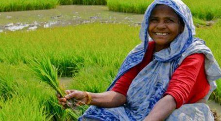 હવે ગેરંટી વગર મળશે 1.6 લાખની લોન, ખેડૂતોને આ રીતે મળશે ફાયદો