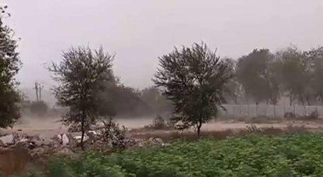 ગુજરાતમાં હવામાને કરી સ્ટ્રાઈક, વાવાઝોડાથી ઉભા પાક થયાં જમીનદોસ્ત તો ક્યાંક કમોસમી વરસાદ