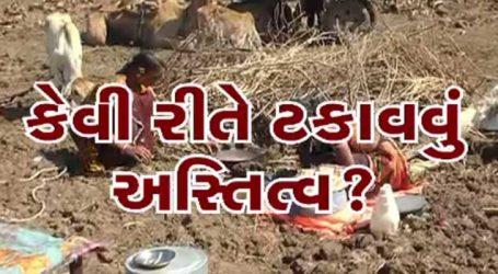 ગુજરાતમાં દરેક લોકો સુખે રહે છે, કોઈને કંઇ તકલીફ નથી, આ તો લોકોના નસીબ