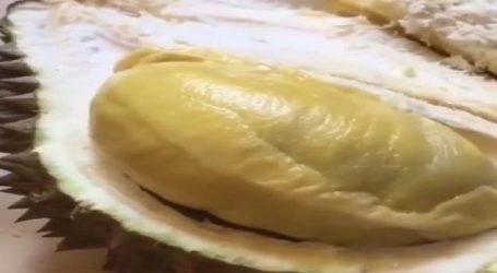 સડેલા મોજા અને ગંદા નાળાની વાસ આવે છે આ ફળમાંથી, છતાં 35 હજાર રૂપિયા કિલો છે ભાવ