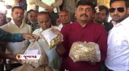 મગફળી મોંઘી પડીઃ જૂનાગઢ માર્કેટ યાર્ડમાં ખેડૂતો પાસે રૂપિયા લેવામાં આવી રહ્યા છે
