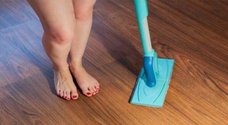 ન્યૂડ થઈને કરવી પડશે ઘરની સાફ-સફાઈ, આ કંપની આપી રહી છે એક કલાકના 4,100 રૂપિયા પગાર