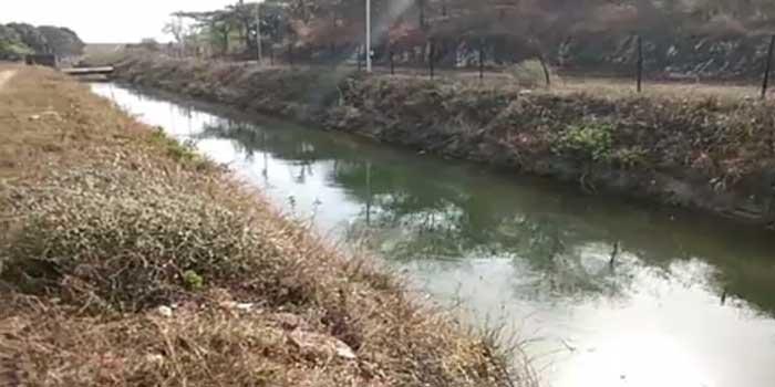 Majum dam Aravalli