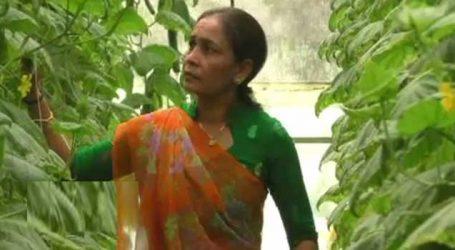Women's Day 2019: ખેતી કરીને કરે છે લાખોની કમાણી, પ્રગતિશીલ મહિલા ખેડૂતની પ્રેરણાદયક છે કહાણી